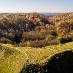 Bradeliškių piliakalnis